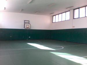 Foto palestra scuola primaria pascoli